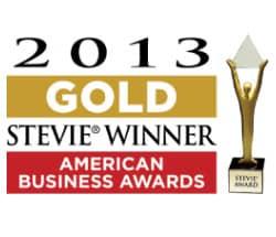 2013 gold stevie winner_american business awards